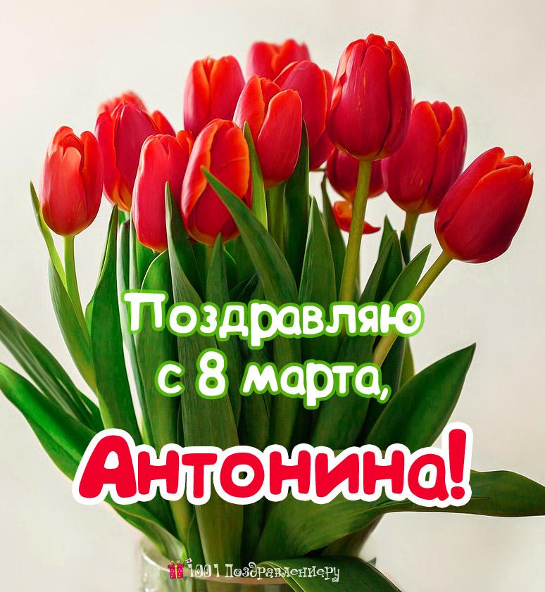 Поздравления с 8 марта Антонине