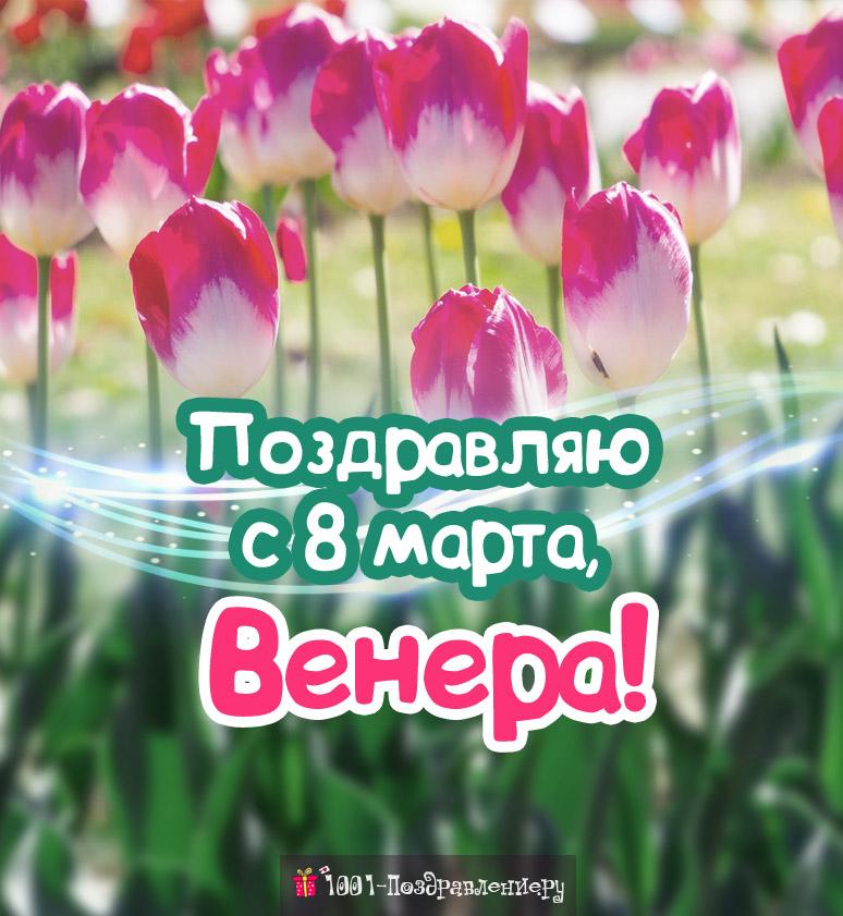 Поздравления с 8 марта Венере